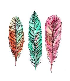 Pretty drawing of feathers