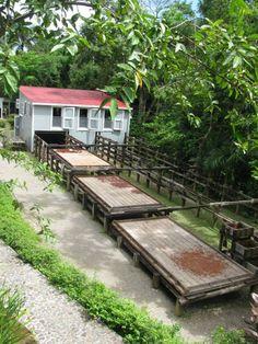 haciendas cafetaleras de puerto rico | Ponce recalls 19th century colonialism in Puerto Rico | www.ajc.com