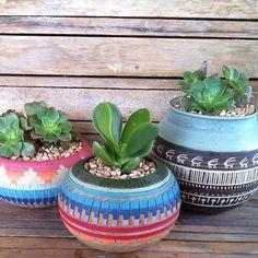 Succulent pots Succulent Pots, Cacti And Succulents, Planting Succulents, Planting Flowers, Plants Are Friends, Cactus Y Suculentas, Little Plants, Plantar, Plant Decor