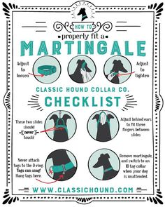 Martingale Checklist How To Properly Fit A Martingale Collar - Classic Hound Martingale Dog Collar, Dog Insurance, Dog Facts, Dog Safety, Grey Hound Dog, Collar And Leash, Dog Collars, Dog Training Tips, Dog Supplies
