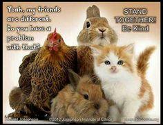 #Friendship