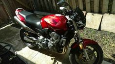Used 2006 Honda CB 900F Motorcycles For Sale in Florida,FL. Bike runs great, very quick. Just rode it for the South Florida Toys in the Sun Run Charity last weekend, ran perfectly. Naked sport bike, unique style. Tank has a couple of dents, not very noticeable. Light scratches on alternator cover. Small scrape on rear faring. Bike was laid down at low speeds about 6 years ago, due to awesome Florida drivers. Only cosmetic damage mentioned above. Custom integrated led tail light and turn…