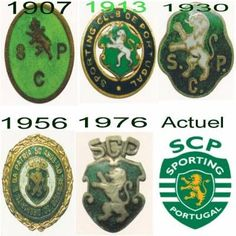 Badge over the years Portugal Soccer, Happy Turtle, Ladybug Rocks, Sport C, Turtle Rock, Image Foot, Football Mexicano, Silhouette Painting, Sports Clubs