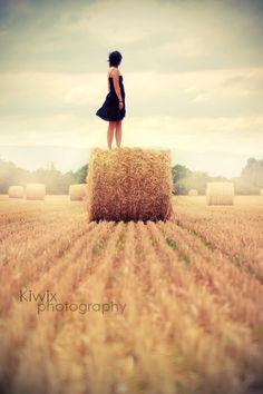 Plenty of hay rolls around these parts...