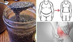 You've probably heard of chia seeds. Salvia Hispanica or Chia is a flowering plant and it's a member of the mint family – Lamiaceae. Chia originates from Guatemala and Central … Salvia Hispanica, Weight Loss Drinks, Fast Weight Loss, How To Lose Weight Fast, Chia Pet, Semínka Chia, Healthy Holistic Living, Healthy Living, Nutrition