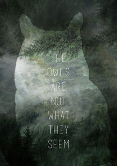 """The owls are not what they seem"" David Lynch, Twin Peaks Thriller, David Lynch Twin Peaks, Grand Duc, Laura Palmer, Between Two Worlds, Nostalgia, Cultura Pop, Look At You, Favorite Tv Shows"