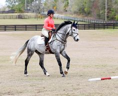 Sharon White: Become A Self-Confident Leader for Your Horse