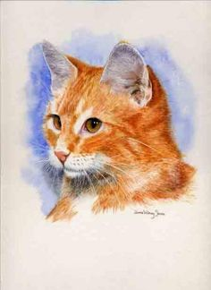 Dianne Whitney-Searle   WATERCOLOR