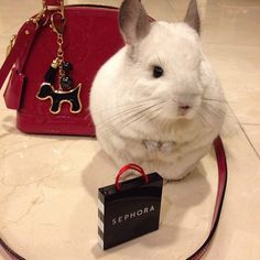 Ela já comprou os presentes para dar a sua família e amigos.