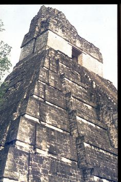 Temple 1, photo by Linda Schele