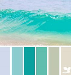 Color Wave by Design Seeds