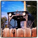 Creepy 'Peek-a-boo' Tractor... Instacanvas - Instagram artist marketplace