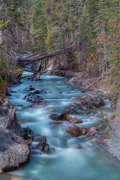 The Emerald River ~ Yoho National Park ~ British Columbia, Canada by oldrose Rocky Mountains, British Columbia, Places To Travel, Places To See, Beautiful World, Beautiful Places, Landscape Photography, Nature Photography, Landscape Art