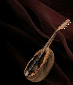 This a truly amazing mandolin created from a walnut shell - inspiration I would love to try Acorn Crafts, Pine Cone Crafts, Walnut Shell Crafts, Fairy Furniture, Miniature Furniture, Tiny Dolls, Shell Art, Miniature Fairy Gardens, Nature Crafts
