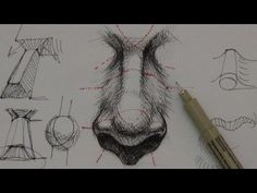 Pen & Ink Drawing Tutorials | How to draw a realistic nose - YouTube