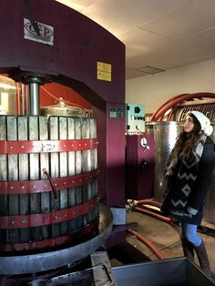 Canadian Icewine producer - Niagara-on-the-Lake - Between the Lines Winery