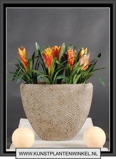 grote ovale bloempot binnen opgemaakt - Google zoeken  Decoratie ...