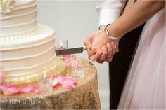 The Bride  Groom Cut into their Delicious Cake - Steph Stevens Photo - #AldenCastle #ModernVintage #Weddings #Cake #WeddingCake #LongwoodVenues