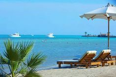 Strand des Steigenberger Al Dau Beach Hotel Hawaii Resorts, Visit Egypt, Red Sea, Beach Hotels, Countries Of The World, Outdoor Furniture, Outdoor Decor, Sun Lounger, Beautiful Places