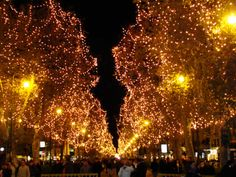Sistemato il file ricevuto dal Comune di Palermo con le attività del Natale, buona consultazione!