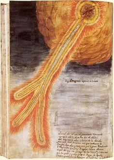 Scientific Illustration   transoptic: Joseph Boll's depiction of the 1704...