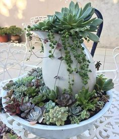 Prepare Your Balcony for Spring with Kitchenware Planters - Unique Balcony & Garden Decoration and Easy DIY Ideas # Garden Garden apartment Garden ideas Garden small Balcony Garden, Indoor Garden, Indoor Plants, Outdoor Gardens, Easy Garden, Indoor Cactus, Cactus Cactus, Garden Beds, Potted Plants