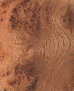 43 Best Burl Veneer Images Wood Veneer Sheets Wood