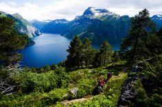 The Geiranger fjord - These days the old post route between Bergen and Trondheim serves as a hiking and biking trail. Trondheim, Bergen, E Mountain Bike, Norway Fjords, Mtb Trails, Visit Norway, Epic Photos, Amazing Adventures, Outdoor Activities
