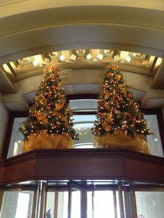 Duo chic sur une Marquise. Réalisation par #Alphaplantes #Noel #Christmas #Holidays #Fetes #Chic #Gold #Doré #Tree #Christmastree #Xmas