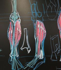 Were getting into the lower leg next week at ArtCenter in Pasadena. Here are two views of the lower leg that fit within the basic lower leg construction I posted two days ago. #scrippscollegeart #lifedrawingcambridge #uscanimation #otiscollegeofartanddesign #artcentercollegeofdesign #massart #lifedrawinginsheffield #lifedrawingworkshop #lifedrawingsketching #lifedrawingbarcelona #lifedrawinglondon #lifedrawingsessions #lifedrawingmelbourne #lifedrawingclass #laafa #gnomon #woodburyuniversity…