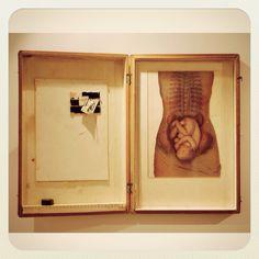 Entomology box 2 Artists, Box, Frame, Life, Home Decor, Picture Frame, Snare Drum, Decoration Home, Room Decor