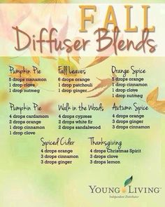 YL Fall diffuser blends