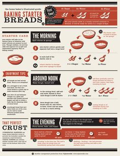 Baking Starter Breads