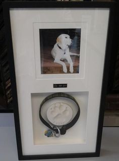 Custom framing is a fantastic way to honor your lost loved ones. Custom framed by FastFrame of LoDo. #DogsStuff