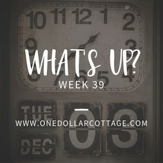 what's up?    week 39 What in the world have I been up to for the last six months?? #onedollarcottage #whatsup http://onedollarcottage.com/2016/09/29/whatsupweek39/