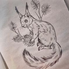 #squirrel #drawing #sketches #pencil #sketch #sketchbook #animaldrawing #pencildrawing #illustration #art #essitattoo #tattoodesign #tattooidea #tattooart #tattoosketch #natureart #wildlifeart #piirustus #kuvitus #illustrator #tattooartist #instaart #instaartist