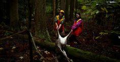 """""""O Grito do Bicho"""": Elas enfrentam cervos e javalis: Caçadoras ajudam ..."""