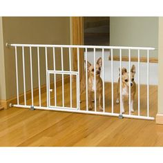 Carlson Mini Dog Gate with Small Pet Door