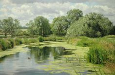 "https://www.facebook.com/MiaFeigelson ""Summer water"" (2011) [Sold] By Peter Barker, from Banbury, Oxfordrshire, England (current location, South Luffenham, England) - oil on linen; 20 x 30 in - http://www.peterbarkerpaintings.co.uk/ https://www.facebook.com/PeterBarkerARSMA http://peter-peterbarkerpaintings.blogspot.com.ar/"