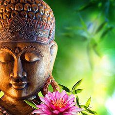 184 Best Zen Wallpaper For Walls Images Zen Wallpaper Buddha