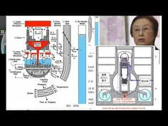 Fukushima Japanese Scientist/Radiation Pouring into Pacific/Calif's Beac...