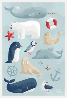 53 Best Ideas For Illustration Art Prints Animals Meer Illustration, Anchor Illustration, Polar Bear Illustration, Seafarer, Canvas Prints, Art Prints, Boy Art, Cute Drawings, Illustrators
