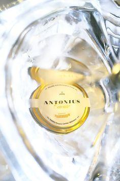 Antonius Caviar at Pod Nosem. An interesting degustation of Polish world-class caviar. More on the blog: http://dania-kontra-ania.blogspot.com/2015/12/relacja-degustacja-kawior-antonius-pod-nosem-krakow.html