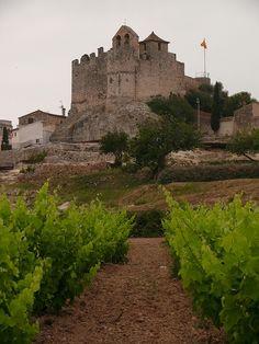 Castell de Calafell Penedès Catalonia