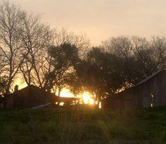Sunrises!