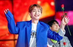 Shinee Members, Shinee Onew, Lee Jinki, Bias Wrecker, Concert, Tofu, Board, Concerts, Planks