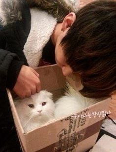 Pre-debut Taehyung petting a cat he must've found somewhere, or something. XD