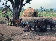 Digui, Central African Republic