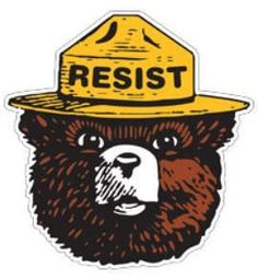 Official Smokey Bear Souvenir Patch Only You Can Prevent Forest Fires Smoky the Hobo Symbols, Bear Paintings, Wildland Firefighter, Smokey The Bears, Bear Birthday, Weird Art, Aesthetic Stickers, Stone Painting, Pop Art
