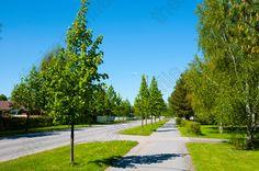 Image of Empty street and pedestrian footpath in Murtosenmutka suburb Ruosniemi district Pori Finland Europe | Peter Forsberg